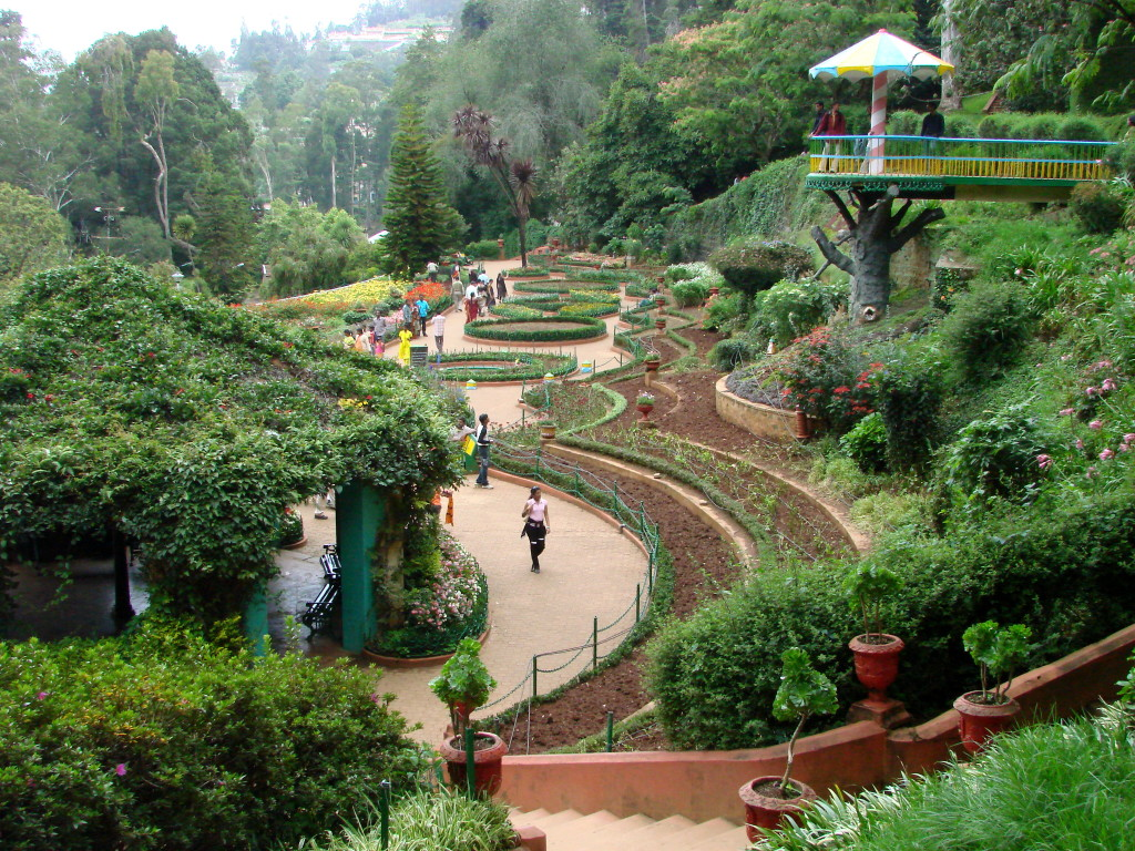 Ooty - Start a new life in nature's lap
