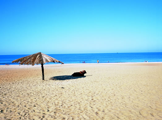 Pondicherry - Have a relaxing honeymoon with your partner