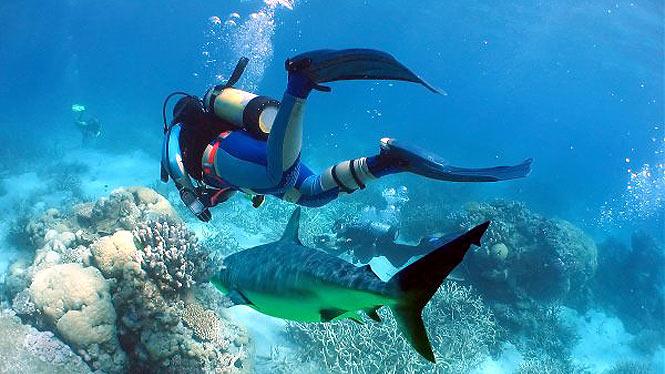 Scuba Diving in Phuket Thailand